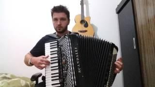 """""""Despacito """" acordeon"""