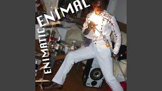 Enimal