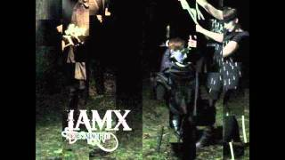 IAMX - Bernadette (Headfuck Collage)