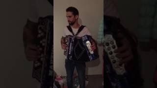 Marzioli 4 meses na concertina