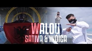 SATIVA & INDICA - WALOU [OFFICIAL VIDEO] prod. by Vienca