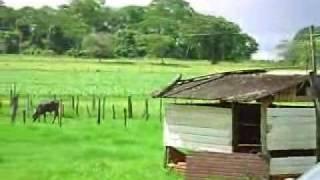 Clarinete Bacheret ébano-01