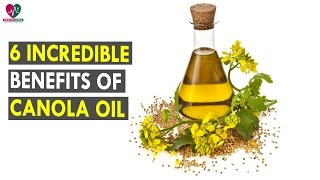 6 Incredible Benefits Of Canola Oil || Health Sutra - Best Health Tips