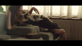 My Name is Cate | Stradivarius Otoño 2015