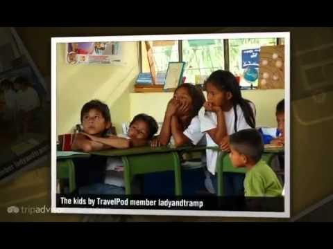 """Into the Amazon Rainforest"" Ladyandtramp's photos around Puyo Ecuador, Ecuador (puyo rainforest)"