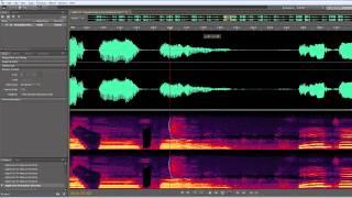 Adobe Soundbooth: Remove dog barks, sneezing etc.