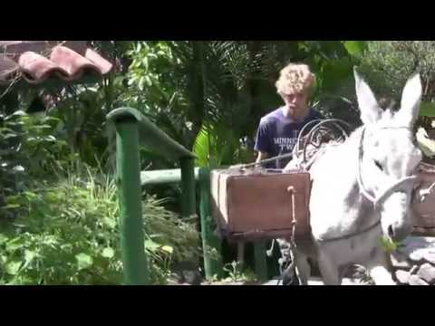 Madre Tierra Resort and Spa Vilcabamba Ecuador with Phil the Burro Part 2 original