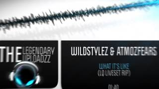 Wildstylez & Atmozfears - What It's Like (Liveset Rip) [LQ/MQ + HD]