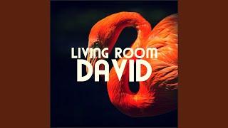 David 116