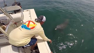 Day 2 of Fishing with Wounded Warrior Scott Lilley (Grouper, Trout, & Petting Dolphin)