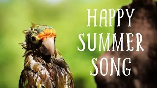 Happy Summer Song - Royalty Free Positive Instrumental Background Music by Basspartout