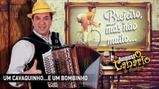 Augusto Canário & Amigos - Um cavaquinho e um pombinho