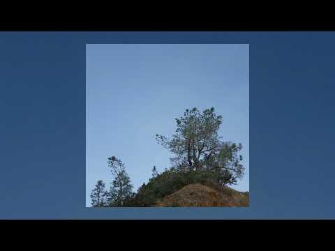 Patricia Taxxon - Telecommunications [Full Album]