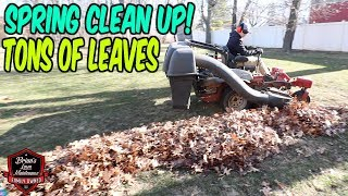 How To Do A Spring Clean Up #3, $175 Job In A Little Over An Hour | Bagging Leaves / Leaf Clean Up