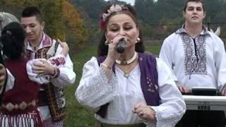Adina Pepa Darcaci - In zile de sarbatoare