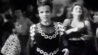 Gloria Gaynor - I Will Survive with Lyrics (on screen) width=