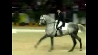 Dressage...Radetsky March