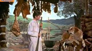 Old Shep-Hank Snow