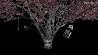 Psihotrop - Solip