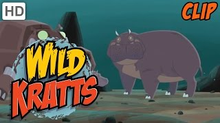 Wild Kratts - How to Live The Adventurous Life (1 HOUR!)