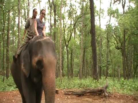 Climbing on an elephant in Nepal