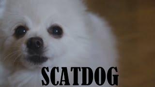 Gabe the Dog - Scatdog (Scatman John - The Scatman)