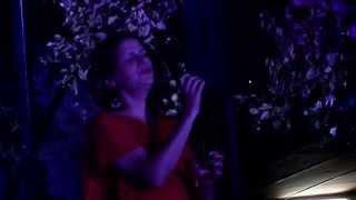 Celia Leiria - Senhora do Livramento