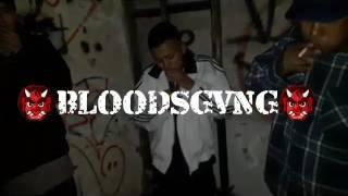  STONNER BONE  ✖ ELEVADOS ✖ #BLOODSGVNG