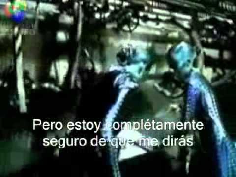 Orgy blue monday video