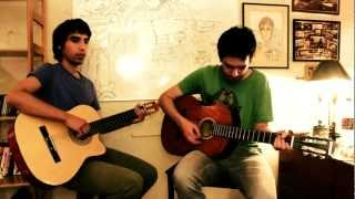 System Of A Down - Deer Dance (Acoustic Cover)