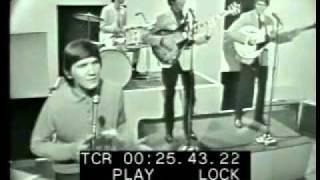 Wayne Fontana & The Mindbenders - Just A Little Bit Too Late (Live)
