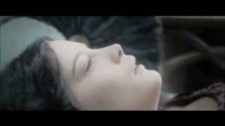 Lord of the Rings - Brave Beauty (Arwen Tribute).wmv