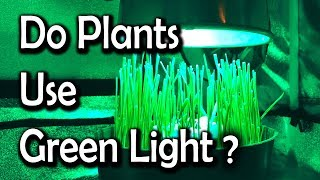 Growing Plants Using Only Green Light
