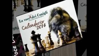 Anteprima calendario 2014 La Voce Dei Conigli