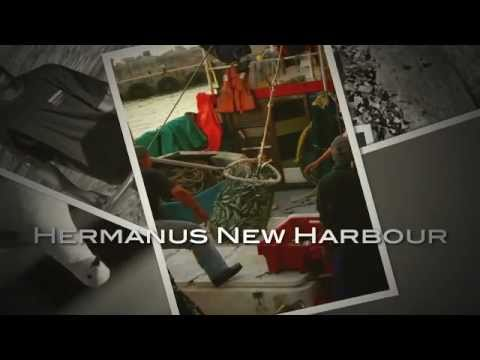 Hermanus New Harbour – South Africa