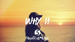 MagSonics & Ane Flem - Why (Part II) [Tradução]
