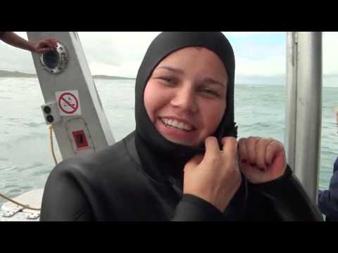 Responsible Tourism Week 2013 – Thank you clients! | Marine Dynamics shark tours