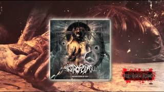 Antropofagus - Demise of the carnal principle, Feat Mariano Somà (Septycal Gorge)