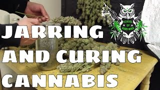 Jarring and Curing Cannabis   Jarring and Curing Marijuana   How to Cure Weed   How to Jar Weed