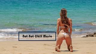 Beach Vibes - Summer Chill Music Mix
