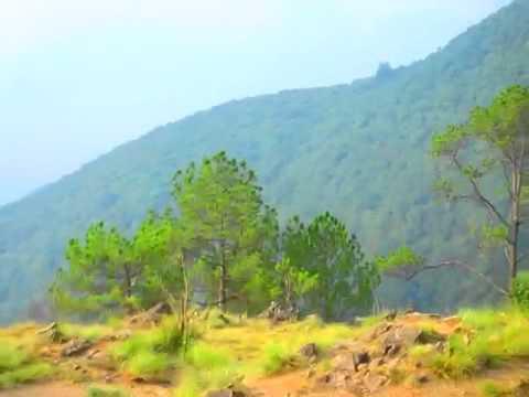 Peaceful birds on Nepal hike