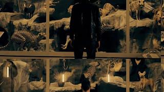 Verlatour - Alone (Teaser / Clip Live )