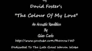 The Colour Of My Love (Guitar Cover)