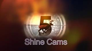 Shine Cams, a Shine Sniping Teamtage:  By Fading Plays