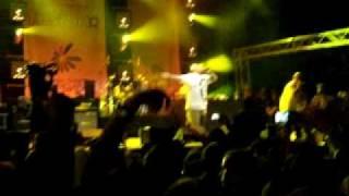 DELINQUENT HABITS - TRES DELINQUENTES LIVE @ EXIT FESTIVAL 11 07 2009