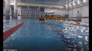 (자막)#평영 #글라이딩 설명 #시범 #breaststroke #recovery