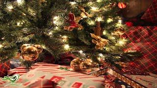 Silent Night | Instrumental Christmas Music | Christmas Song