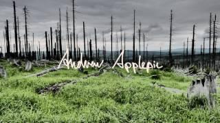 Andrew Applepie - Robo