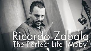 Ricardo Zabala - The Perfect Life [Moby]