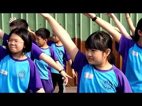 蝴蝶季活動 - YouTube